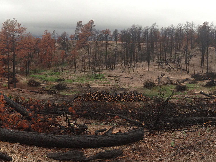 stauffer-and-sons_black_forest_fire_home_burned